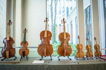 row of different sized cellos and basses.