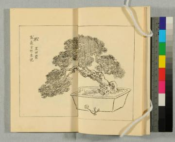 an open book with an illustration of a tree.