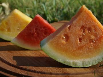 three slices of watermelon in yellow, red, orange.