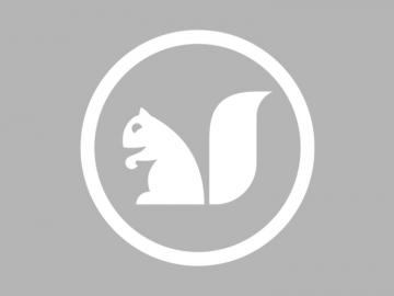A graphic of a profile image of a white squirrel inside a white circle on a gray background