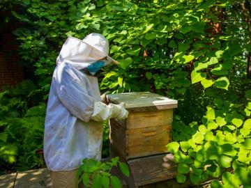 A person in beekeeping attire inspects a wooden box in a garden.