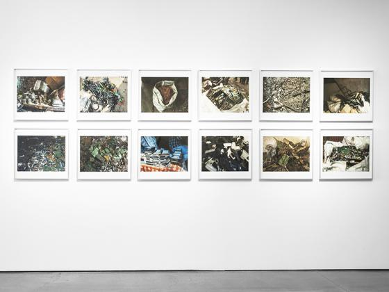 A gallery wall of photographs.