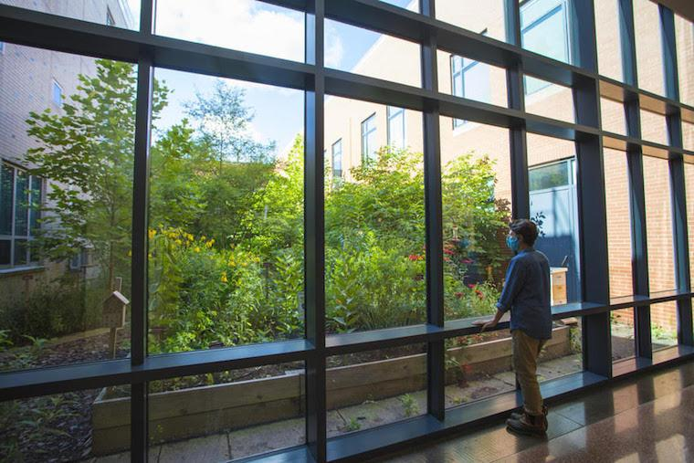 Wearing a COVID prevention mask, a person looks out the window of the science center.