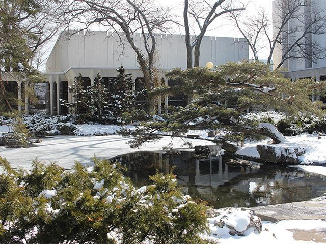 A reflecting pond covered in snow in front of the Conservatory's Bibbins Hall.