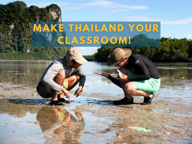 Students study on a mudflat in Thailand.