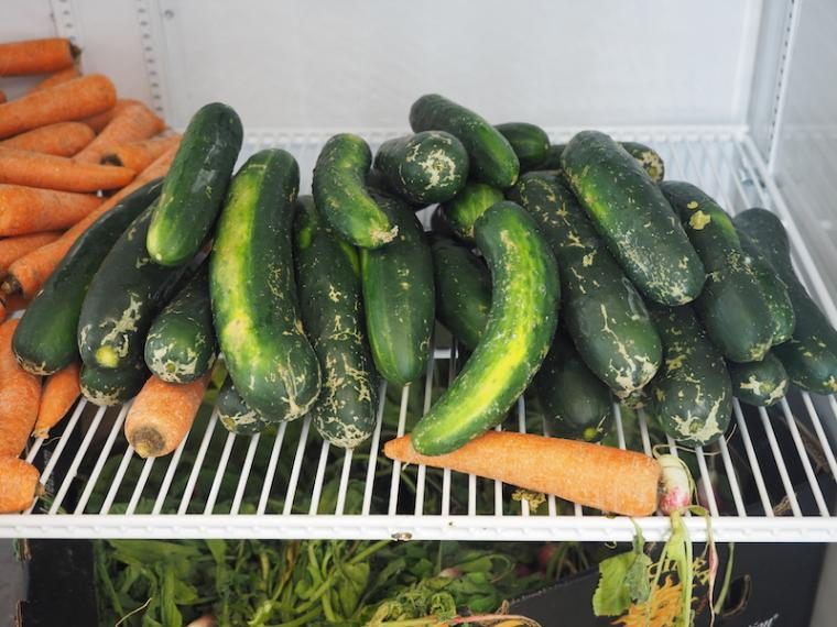 Cucumbers and carrots on a wire shelf