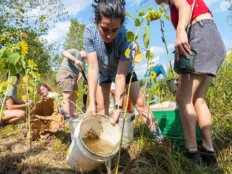 students planting sunflowers on George Jones Memorial Farm.