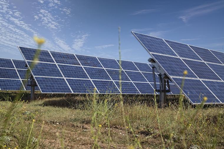 Image of Oberlin's solar array