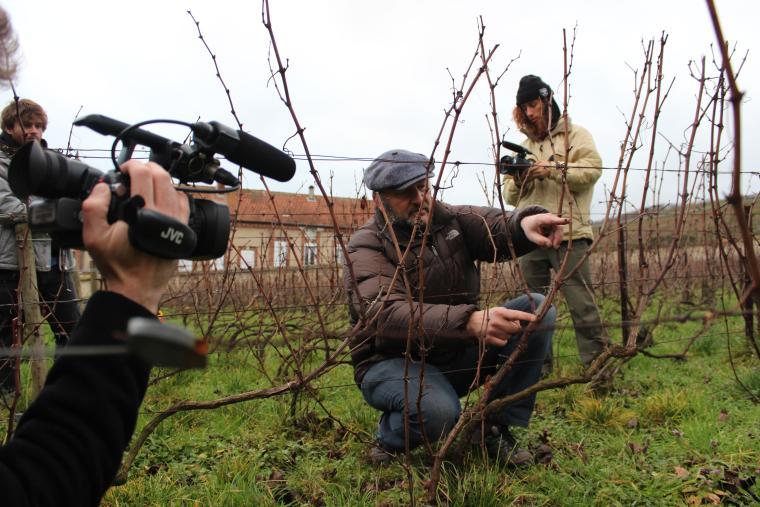Film crew at a vineyard