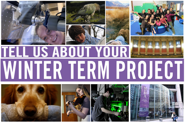 Tell us about your winter term project