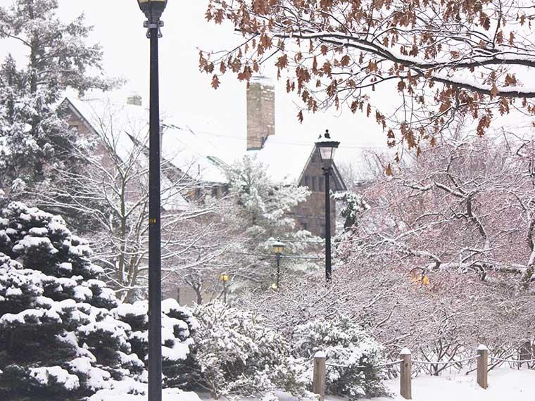 snow on Oberlin's campus