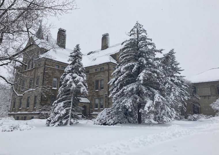 A tall building and evergreen trees are covered in snow.