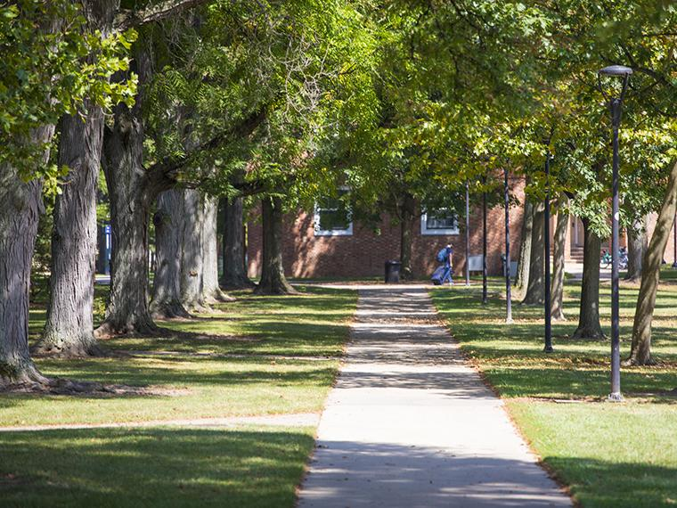 A tree lined path leading to a brick building.