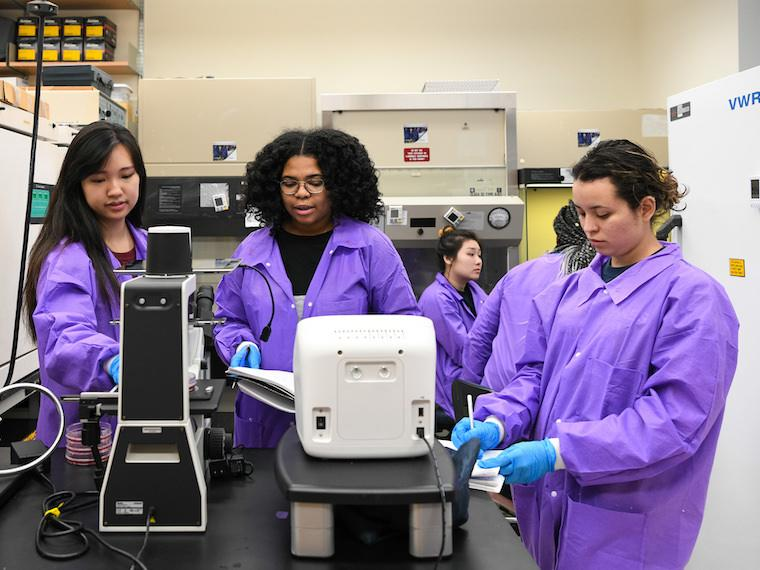 group of women students in purple lab jackets doing experiments.