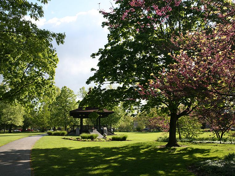 Bandstand, grass, flowering tree