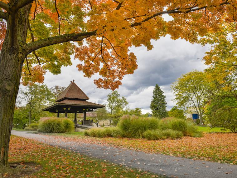 Clark Bandstand in Tappan Square on a fall day.
