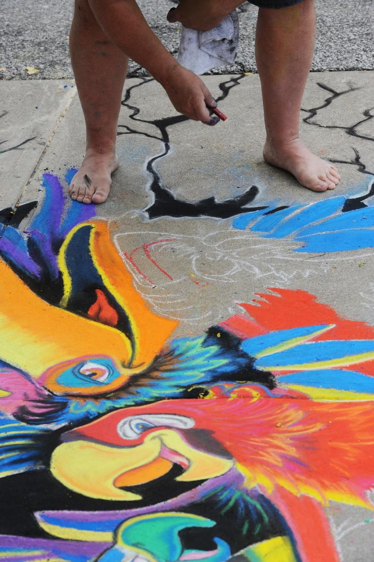 A person crouches over a chalk drawing of stylized tropical birds