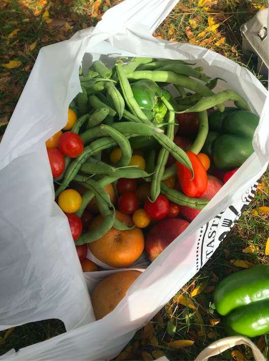 bag of green beans and fresh tomatoes